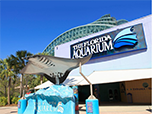 Pete Colangelo - Director of Exhibits & Graphic Design Florida Aquarium